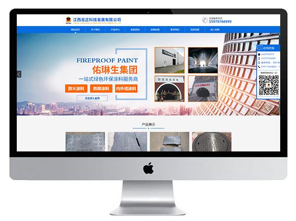 江西龙正科技发展有限公司